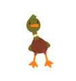 male mallard duck cute funny duckling cartoon vector image vector image
