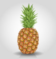 pineapple fruit abstract food vector image vector image