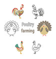 poultry chicken and turkey on white background vector image