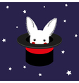 White Rabbit in Magician Hat vector image vector image