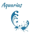 zodiac sign Aquarius vector image vector image