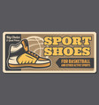 basketball sport ball shoes and equipment vector image