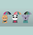 collection cute colorful animals vector image