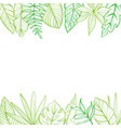 frame with tropical leaves postcard hand-drawn vector image vector image