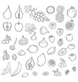 set of stylized fresh cute fruits vector image