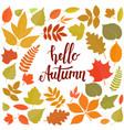 hello autumn round frame vector image