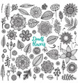 Big set of hand drawn flowers branches vector image vector image