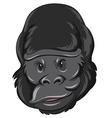 Gorilla head with happy face vector image