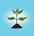 green sprout in the ground vector image vector image