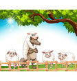 Group of sheeps with a wolf vector image vector image