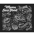 Menu seafood Hand drawn fish carp sea eel vector image vector image