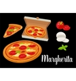 Whole pizza and slices of pizza Margherita in open vector image
