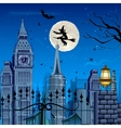 Witch flying on Halloween Night vector image