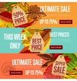 Autumn seasonal sale website templates vector image