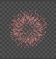 beautiful red firework couple romantic salute vector image