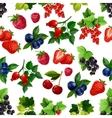 Berries fruits seamless pattern vector image vector image
