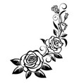 branch of roses vector image vector image