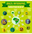 Brazil infographic elements flat style vector image vector image