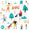 seamless pattern people training dogs in park vector image