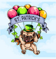 st patricks day pug dog flying with balloon vector image vector image