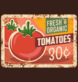 tomatoes rusty metal plate farm price tag vector image