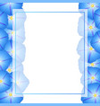 blue morning glory flower banner card border vector image vector image