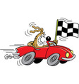 Cartoon dog in a car waving a checkered flag vector image vector image