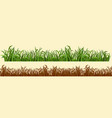 cartoon grass in a row in two variations vector image