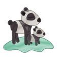 cartoon panda mom with cub over grass in colored vector image vector image
