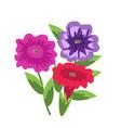 decorative petunias vector image vector image