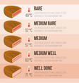 info graphics steak and temperature vector image vector image