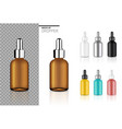 mock up realistic dropper bottle cosmetic set vector image vector image