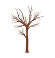tree trunk with branchs without leaves vector image vector image