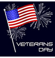 american veterans day celebration with flag and vector image