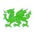 green dragon on white background of vector image
