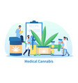 medical cannabis abstract concept vector image