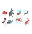 set different beetles and insects vector image vector image