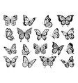 silhouettes of butterflies black pictures vector image vector image