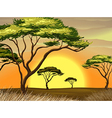 A sunset view at the forest vector image vector image