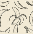 background with bananas vector image vector image