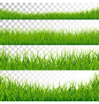 green grass borders set on vector image