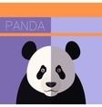 Panda flat postcard vector image vector image