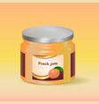 peach jam in jar vector image vector image