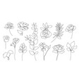 set of hand drawn single continuous line vector image vector image