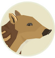 wild animals collection boar baby round frame vector image