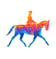 abstract equestrian sport from splash of vector image vector image