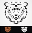 Bear Head Mascot vector image