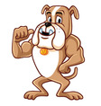 Bulldog Cartoon Mascot Character vector image