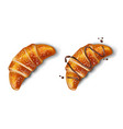 croissant with chocolate isolated realistic vector image