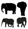 Decorative ornamental elephants silhouette vector image vector image